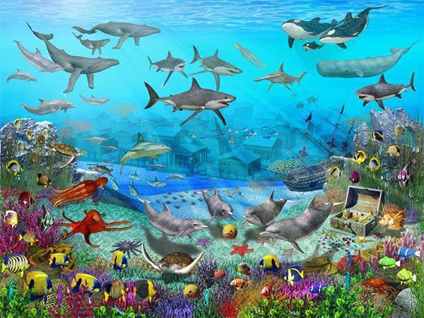 Foto Mural Sea Adventure Animales Mar