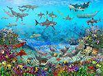 Foto Mural Sea Adventure Animales Mar